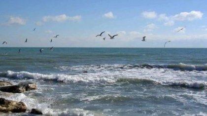 Каспий теңізіне тағы да сасық су құйылып жатқаны жайлы ақпарат тарады (ВИДЕО)