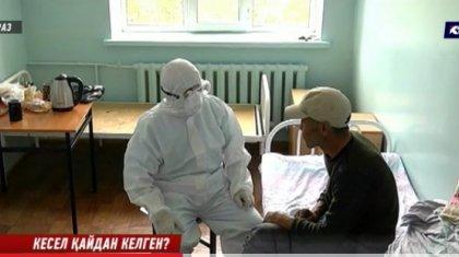 Жамбылда 4 адам Сібір жарасын жұқтырған