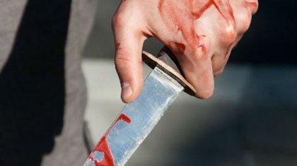 Алматыда ерлі-зайыпты қарияларды айуандықпен пышақтап өлтірген (ВИДЕО)