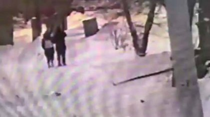 Павлодар: көшеде кетіп бара жатқан қызға шабуыл жасалды (ВИДЕО)