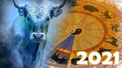 «2021 жылы Қазақстан дамиды...»: белгілі астролог болжам жасады