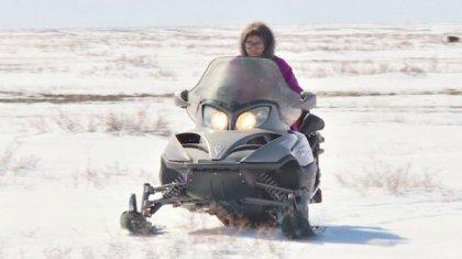 63 жастағы «мобильді әже» мототехникамен мал бағады
