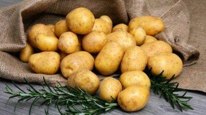 Шетелдің үш есе қымбат картобын жеп отырмыз