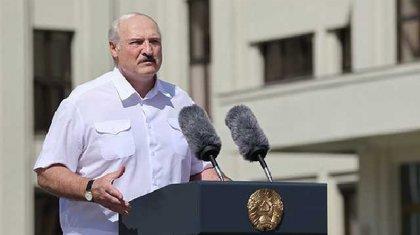 Журналист Лукашенконы батпаққа батқан сиырға теңеді
