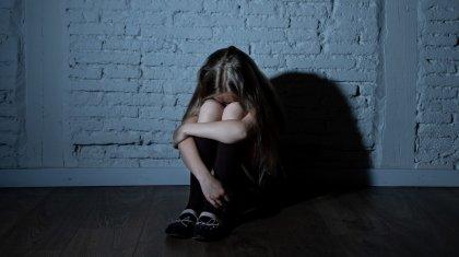 «Әлеуметтік желіде танысқан»: Жамбыл облысында 12 жастағы қыз зорланды