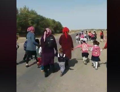 Түркістан облысында оқушылар көрші ауылдың мектебіне бару үшін 3 км жолды жаяу жүреді (ВИДЕО)
