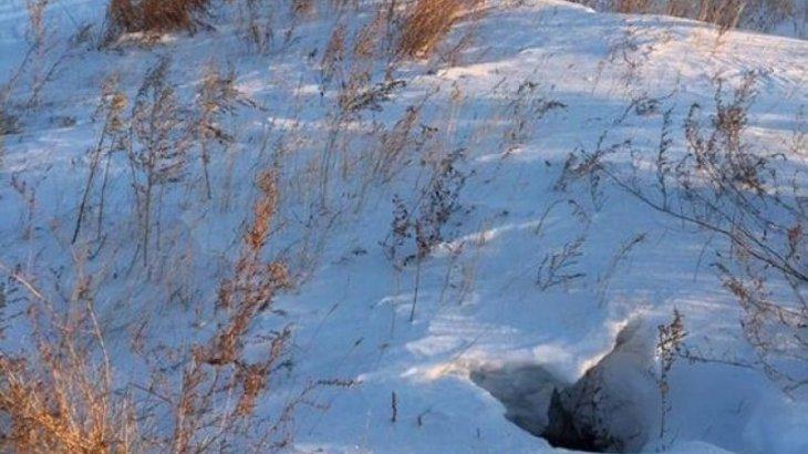 Қостанай облысында 5 жасар қыз құдыққа құлап кеткен