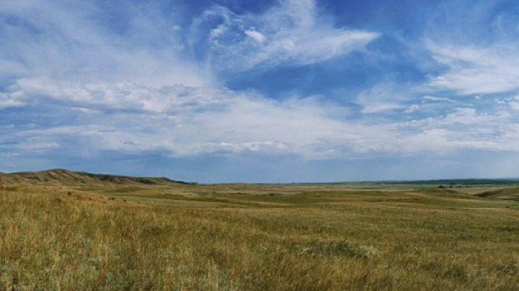 Жайылым жер үшін 400 мың теңге алған түркістандық шенеунік тергеліп жатыр