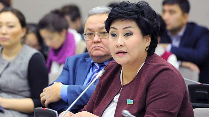 «Аты бар да, заты жоқ»: депутат өңір мектептеріндегі интернет мәселесін көтерді