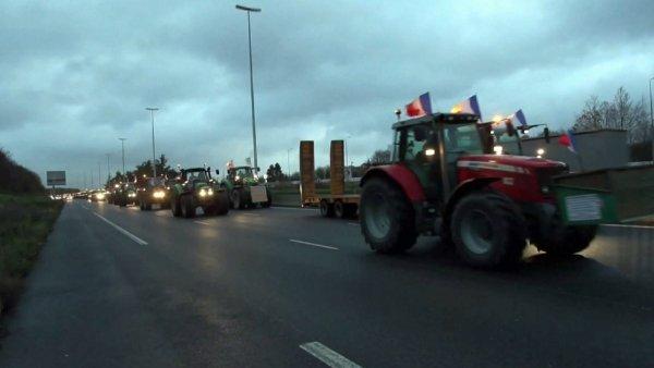 Францияда фермерлер ереуілге трактормен шықпақ