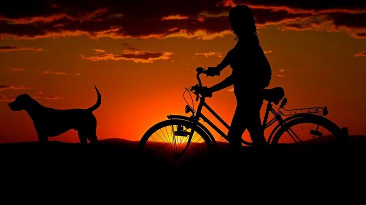 «Қыздың басы кесілген»: Қызылордада жас қыздың өліміне кінәлі адам анықталды