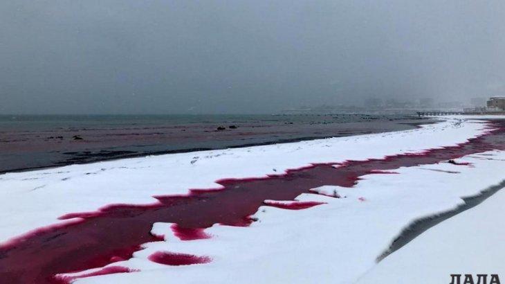 Каспий суының неліктен қызыл түске өзгергені анықталды
