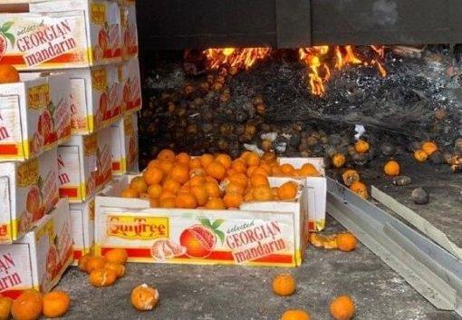 Елордада бір тоннадан астам қауіпті мандарин тәркіленді