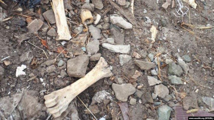 Анасы емшіге сеніп, жануардың сүйегінен жасалған ұнтақпен емделген қыз көз жұмды