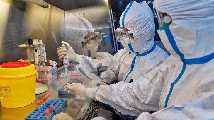 Коронавирустың таралуы 2 жылға созылуы мүмкін - ғалымдар пікірі