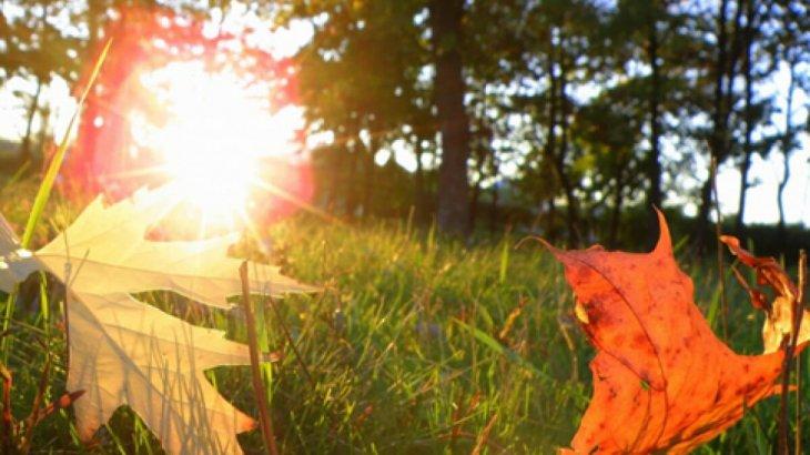 19 қазанға арналған ауа райы болжамы