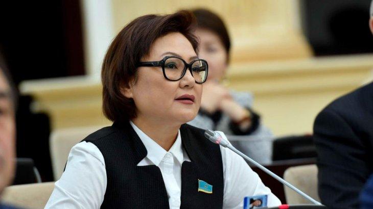 «Тоқаевтың өзі мені депутаттыққа ұсынды» - Дана Нұржігіт