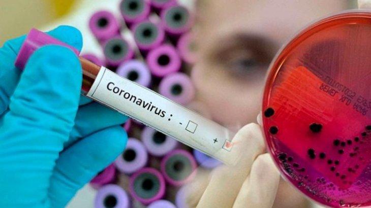 Елімізде бір тәулікте 1686 адамнан коронавирус анықталды