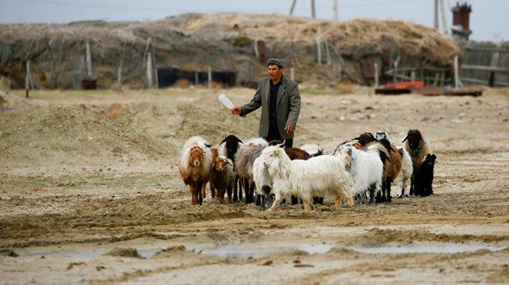 Қызылорда облысында төтенше жағдай жариялануы мүмкін