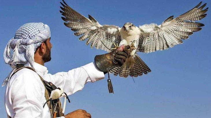 Ел Үкіметі араб шейхтары үшін аң аулау маусымын ашпақ