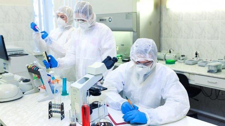 Ғалымдар: Алдағы уақытта коронавирустың тағы 22 штаммы пайда болуы мүмкін