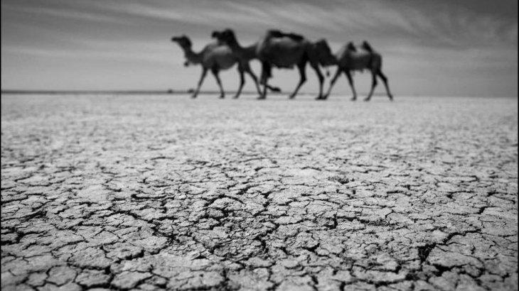 «Қазгидромет»: Шілде айында Қазақстанның бірқатар өңірінде қатты қуаңшылық болады