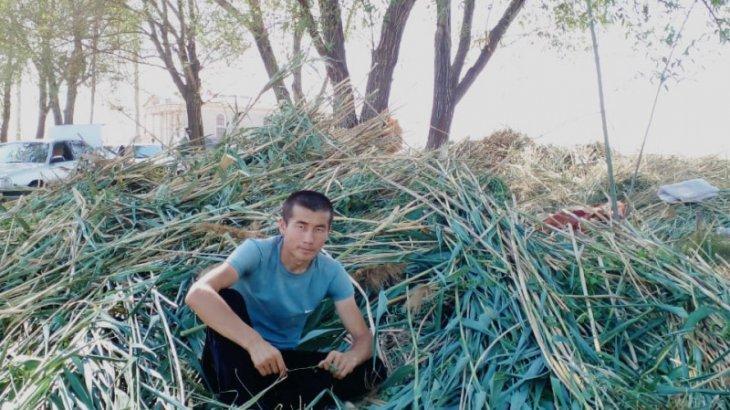 24 жастағы жігіт қуаңшылық басқан өңірлерге шөп жеткізіп жатыр