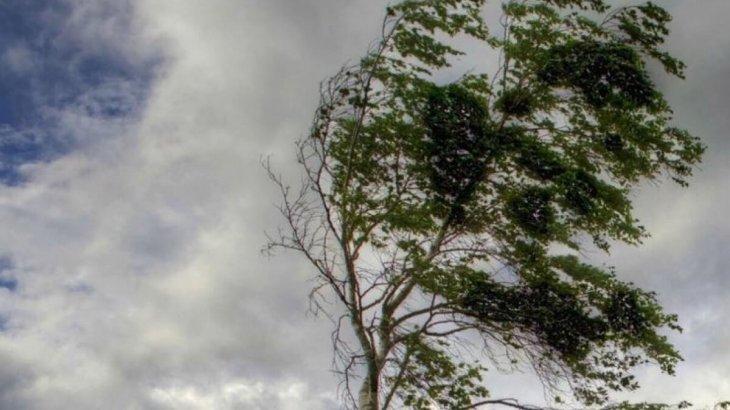 Дауыл соғып, бұршақ жауады: 11 шілдеге арналған ауа райы болжамы