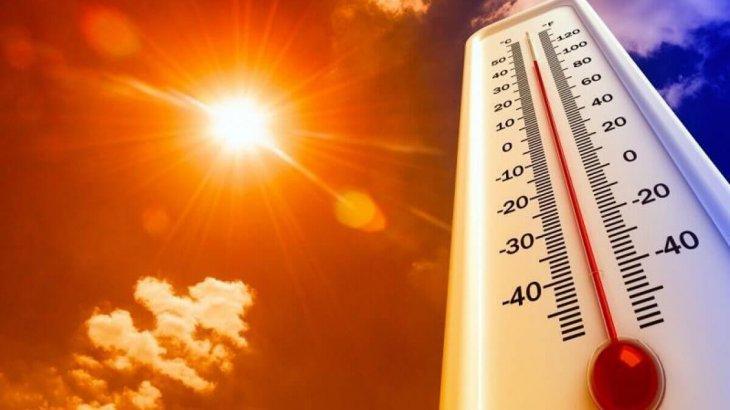 «41 градусқа дейін ысиды»: Елімізде қатты аптап ыстық күтілуде