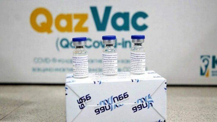 Отандық вакцина QazVac-қа қатысты тың мәліметтер белгілі болды