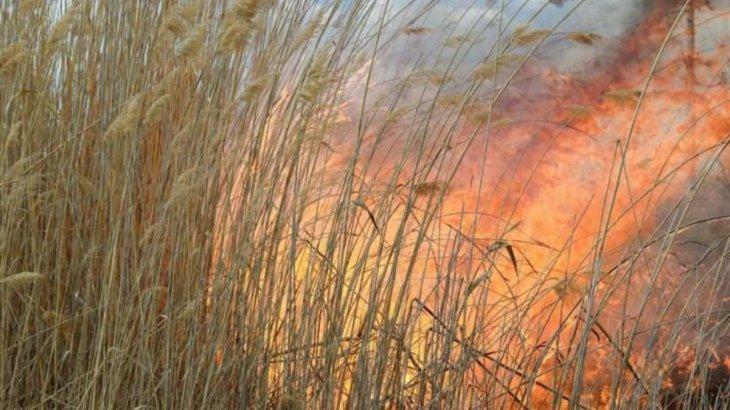 Өте қауіпті қылмыскерлер жатқан «Қара бүркіт» колониясының жанында өрт шықты