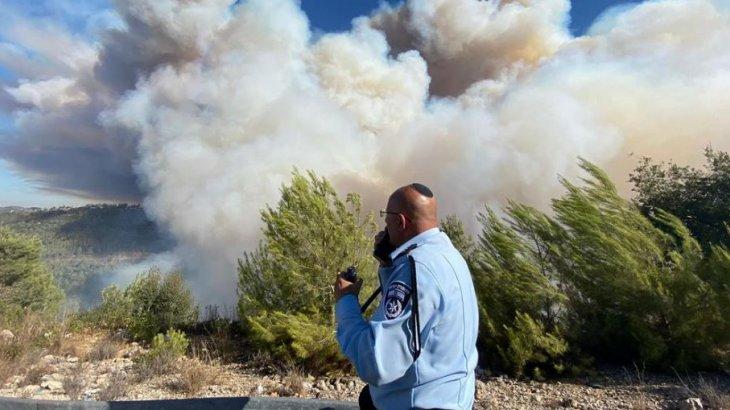 Израиль ормандарында да үлкен өрт басталды (видео)