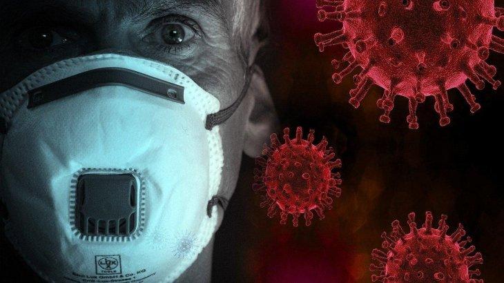 Коронавирустың қайдан шыққанын анықтауға Қытай кедергі болып отыр