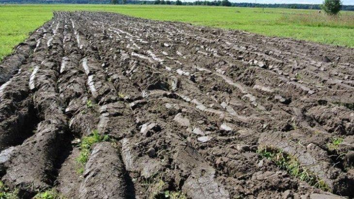 «Қазақстанда 5,5 миллион гектар ең құнарлы жерді 21 адам иеленіп отыр» – Күрішбаев