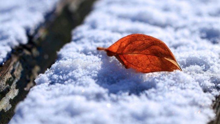 -11°C аяз болады: Алдағы үш күнге арналған ауа райы болжамы жарияланды